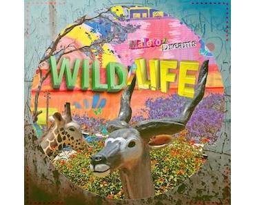 WILD/LIFE