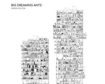 BIG DREAMING ANTS – NANA ADJOA